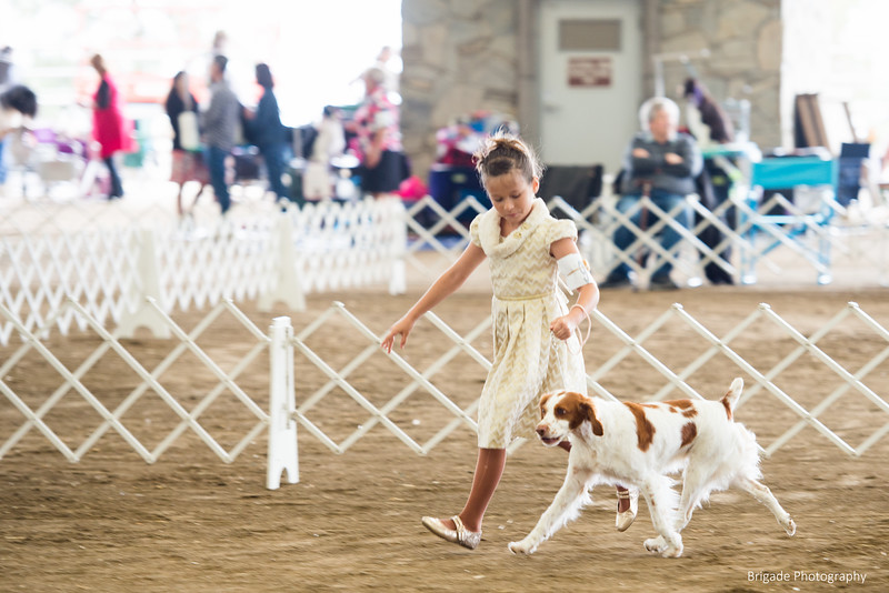 2019 Malibu Kennel Club-9654.jpg