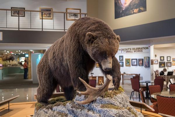 Buffalo Bill Codey Western Museum
