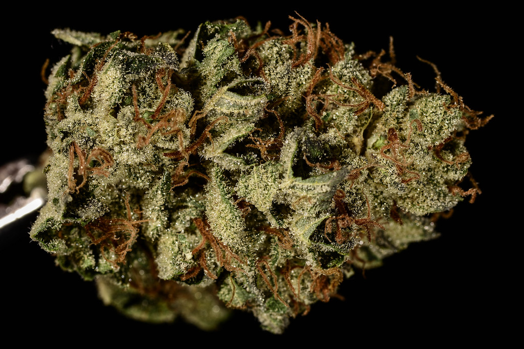 . No. 12: Bruce Banner #3 (Ry Prichard, The Cannabist)