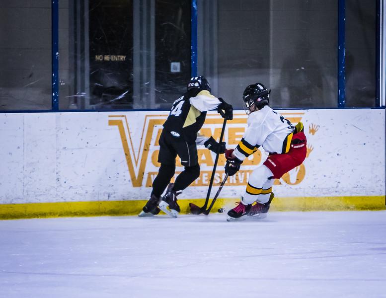Bruins-176.jpg
