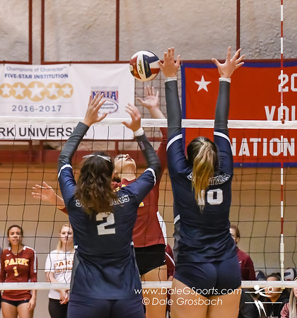 American Midwest Conference Women's Volleyball Tournament 2019
