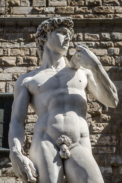 """""""The (Outside) Statue of David"""", Florence, Italy"""