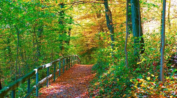 Austria autumn