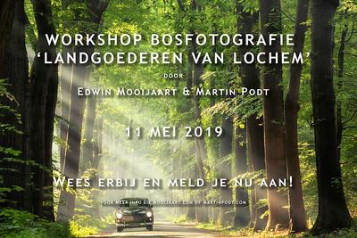 2019-05-11 Workshop bosfotografie (Dutch)