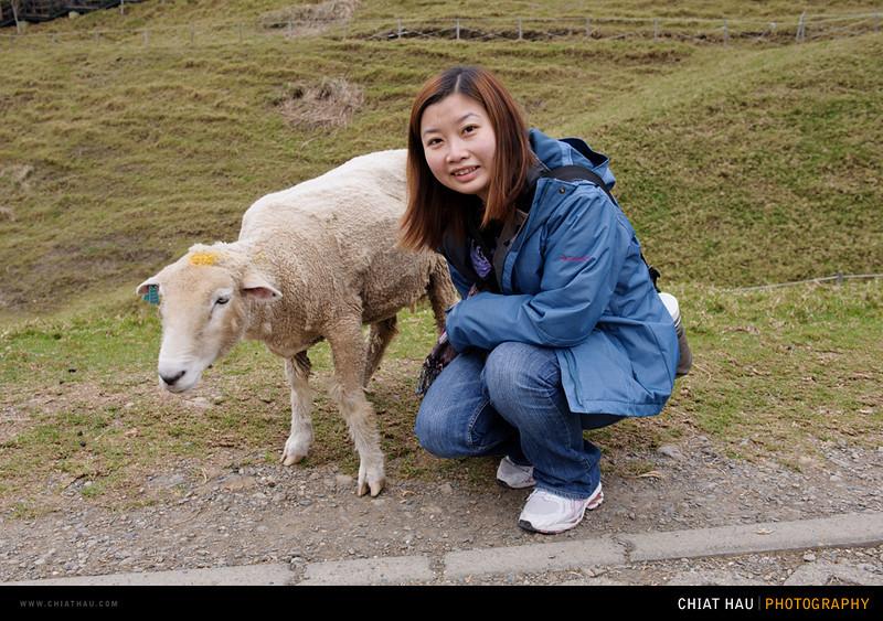 Chiat Hau Photography_Travel_Portrait_Landscape_Taiwan_Day 5-120.jpg