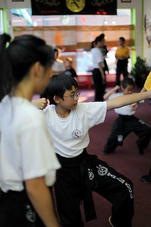 2010-08-03 Wah Lum Kung Fu and Tai Chi Academy