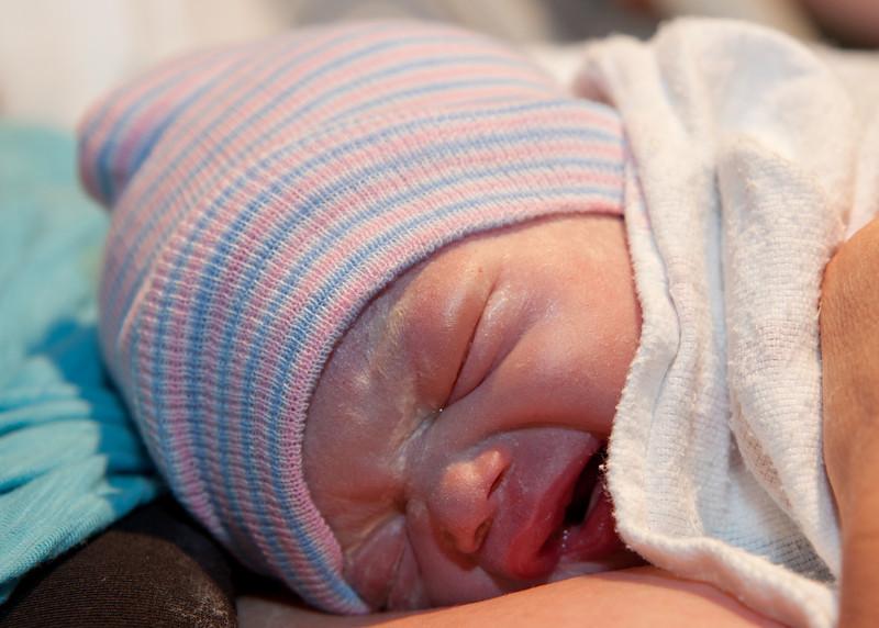 9668 Brand New Baby Spencer-1.JPG