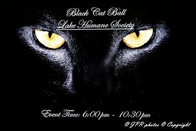 Black Cat Ball 2019