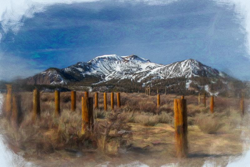 December 25 - Posts, brush and Mammoth Mountain, CA.jpg