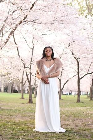 Ginzel Cherry Blossom Finals