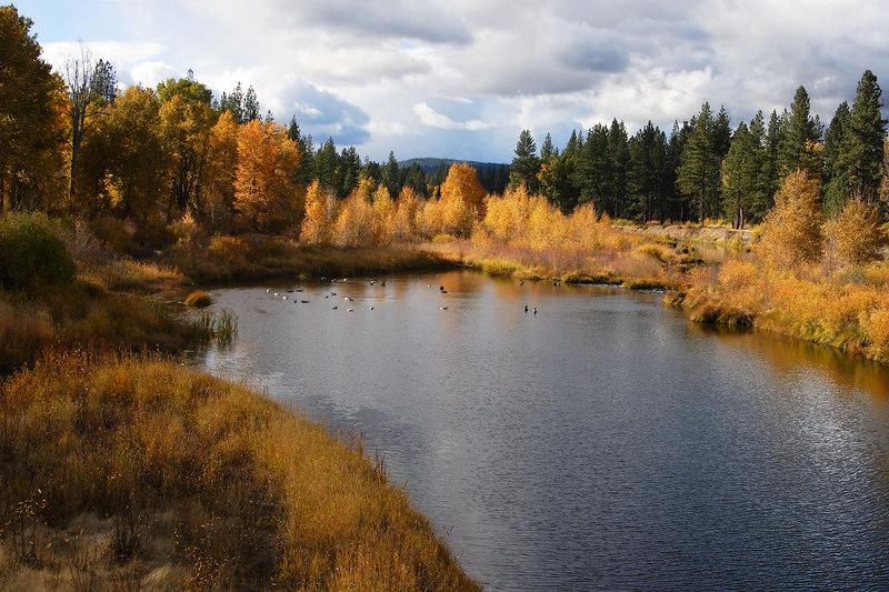 Fall Colors and Lake Graeagle, Plumas County California