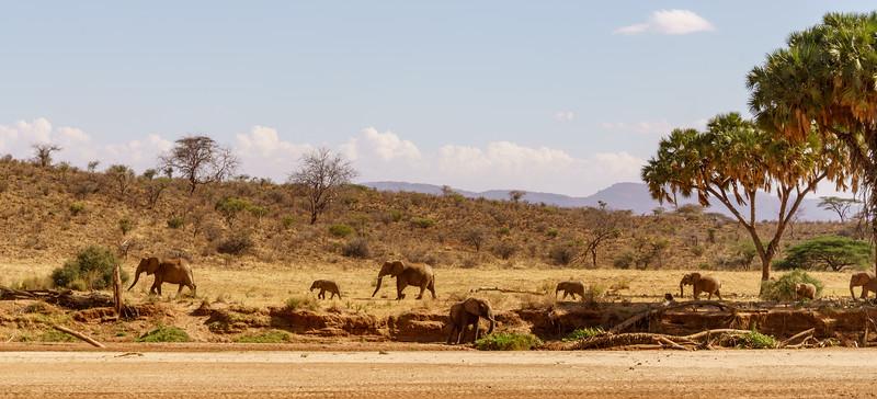 Kenya 2015-00110.jpg