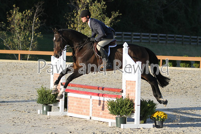 Saturday: 3 Foot Hunter/Equitation in the Grand Prix Ring