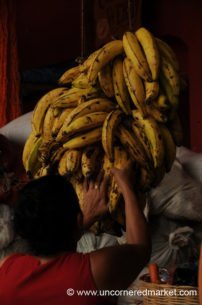 Perfect Bananas - Copan Ruinas, Honduras