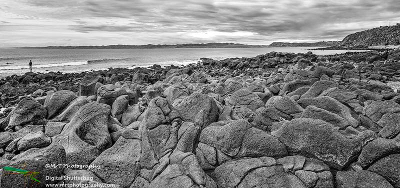Whale Bay Raglan