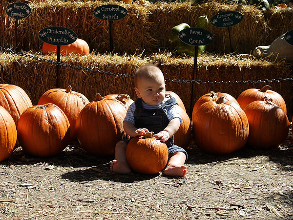 Carter Family at The Dallas Arboretum