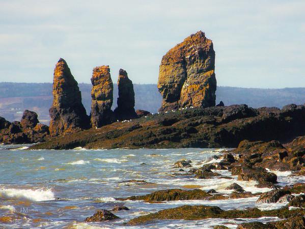 Cape Split & Scots Bay