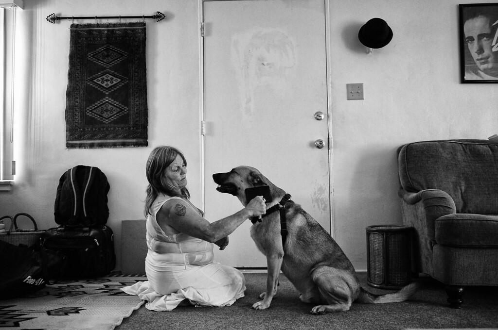 . Dorothy grooms Gunner in her home.