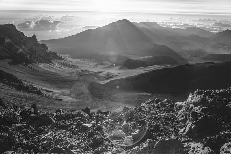 Maui 5D-25.jpg