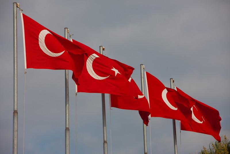 Turkey-3-30-08-31884.jpg