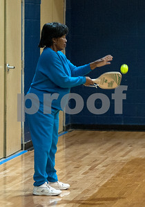 pickleball-a-favorite-pastime