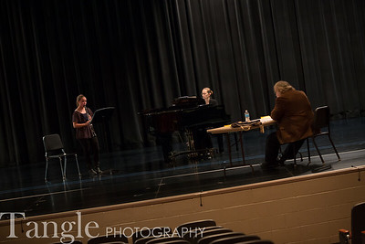 Music - Solo and Ensemble 2014