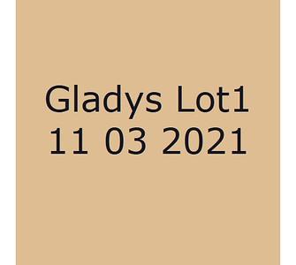 Gladys 11032021  Lot 1