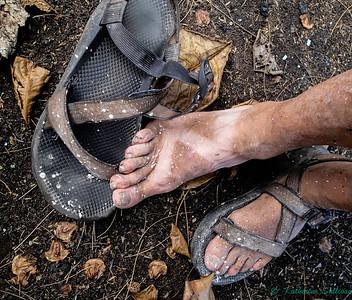 October 2017 - Hands or Feet