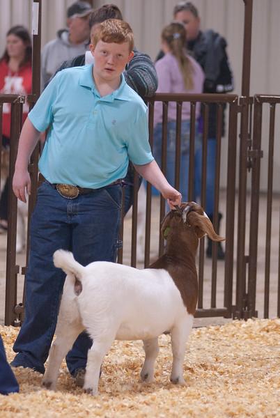 kay_county_showdown_goats_20191207-113.jpg
