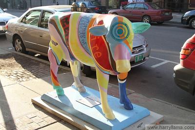 Cows of Burlington 2010