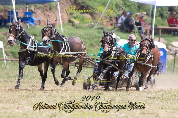 Sunday 4 up Mules