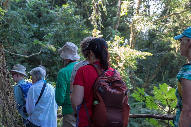 Costa Rica 2015-4168.jpg