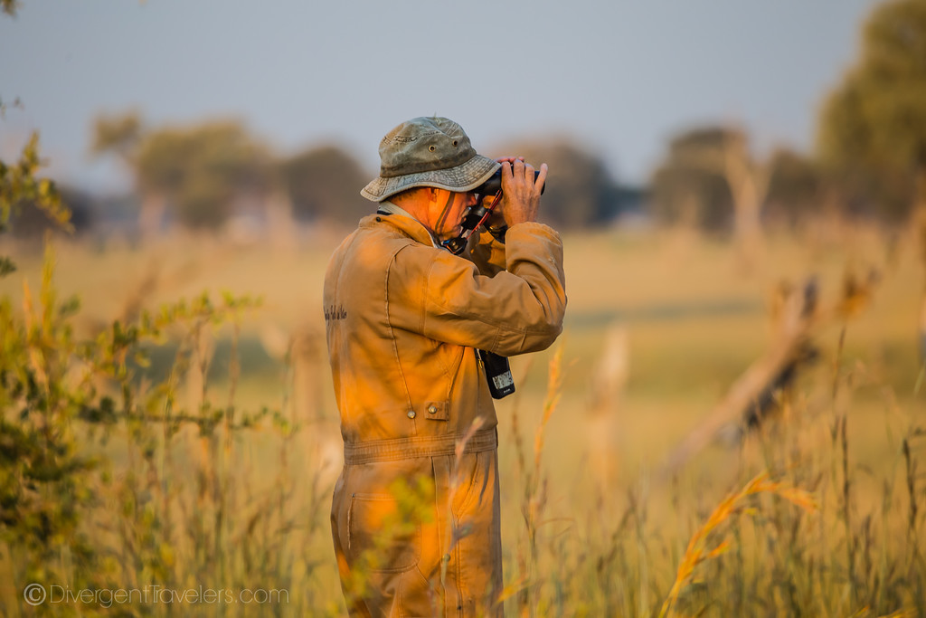 using binoculars on safari in Africa