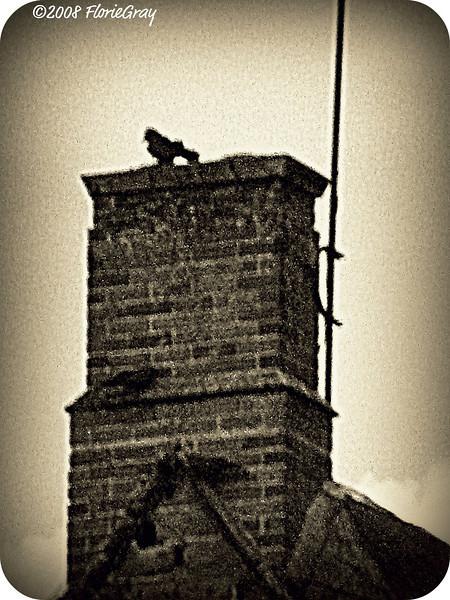Raven's Rest  ©2008 FlorieGray, Wroxton