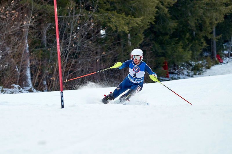 Alpine Skiing 2019