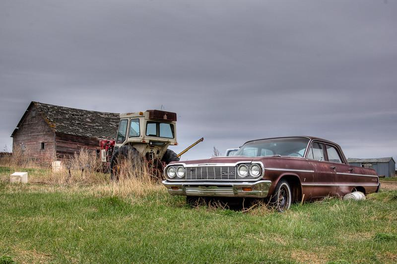 Impala on the Farm
