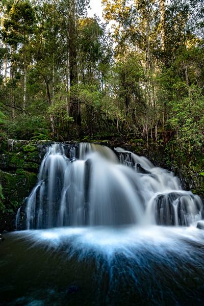 Tasmania-JUL2019-Lilydale-Falls-Upper-2.jpg