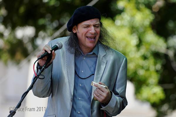 Metro Fountain Blues Festival 2011