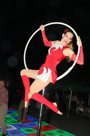 Quail Ridge Circus - T Benson
