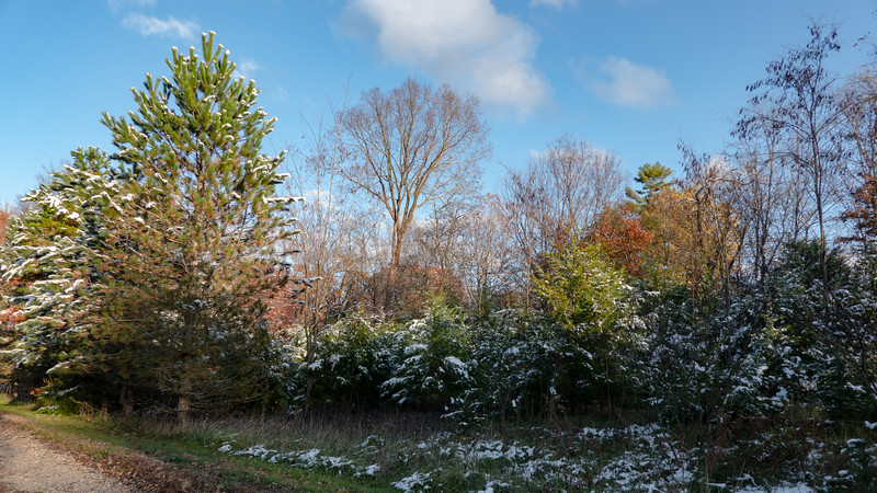 a sunny November day