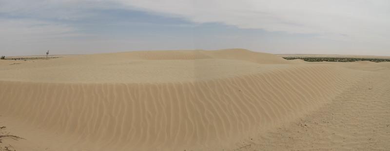Sahara Dunes.jpg