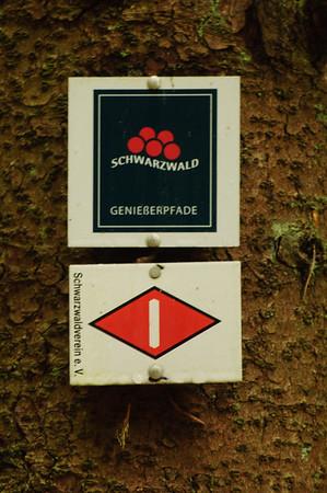 Streckenwanderung im Schwarzwald
