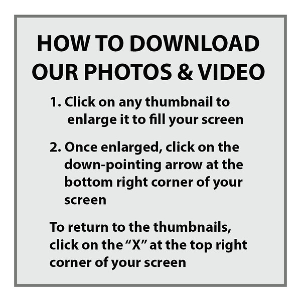 _00AAA - How to download our photographs.jpg