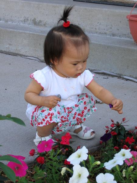 jul 17, 06 picking flowers.jpg