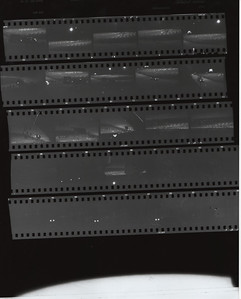 Film Roll #2