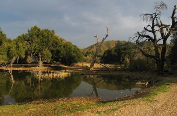 Ranch-15-113-775x581.jpg