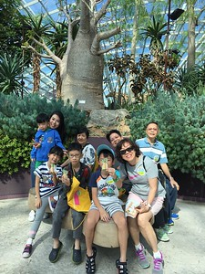 Hobbycraft goes to  Gardens by the Bay