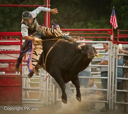 Stegalls Bull riding