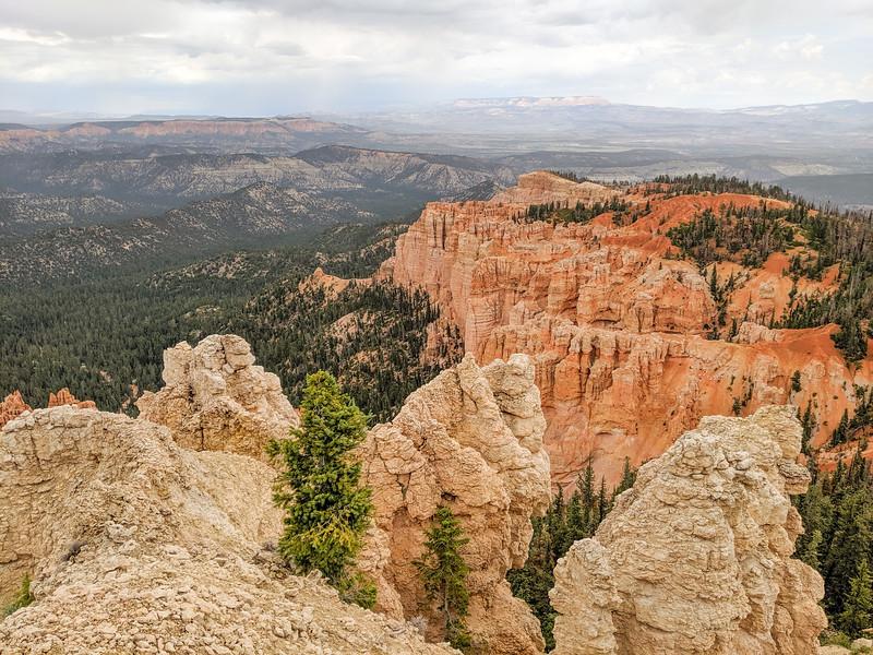 2019 Grand Canyon-441.jpg
