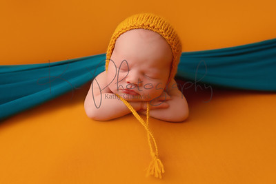 Joanna Mitchell Newborn Shoot